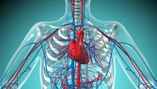 Физические упражнения при сердечно-сосудистой недостаточности