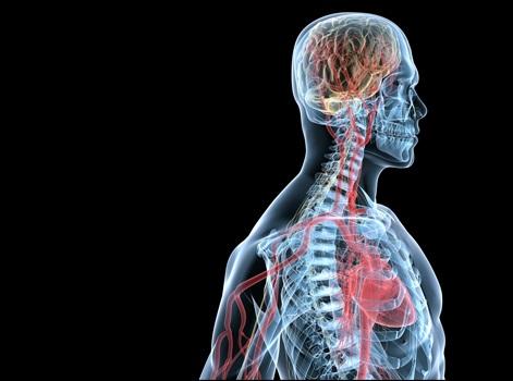 Выявлен новый ген, ответственный за активность рассеянного склероза