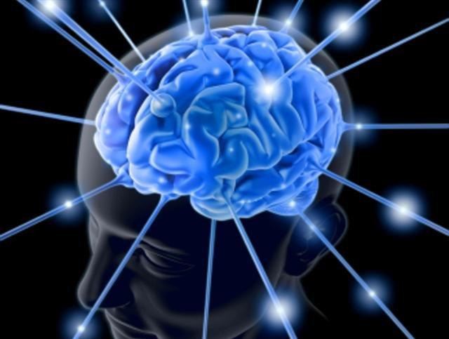 Лучшая еда для мозга: орехи и семена