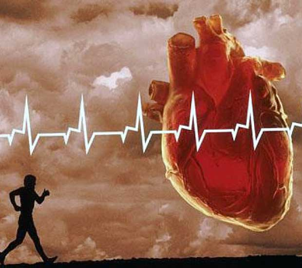 Кардиотренинг для укрепления сердечно-сосудистой системы