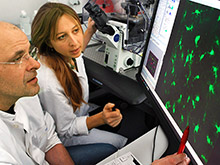 Ученые приблизились к созданию нового метода лечения болезни Паркинсона