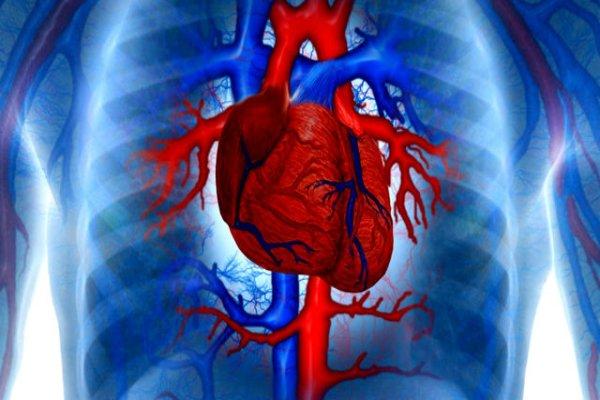 Уровень сахара предсказывает смертность у сердечников