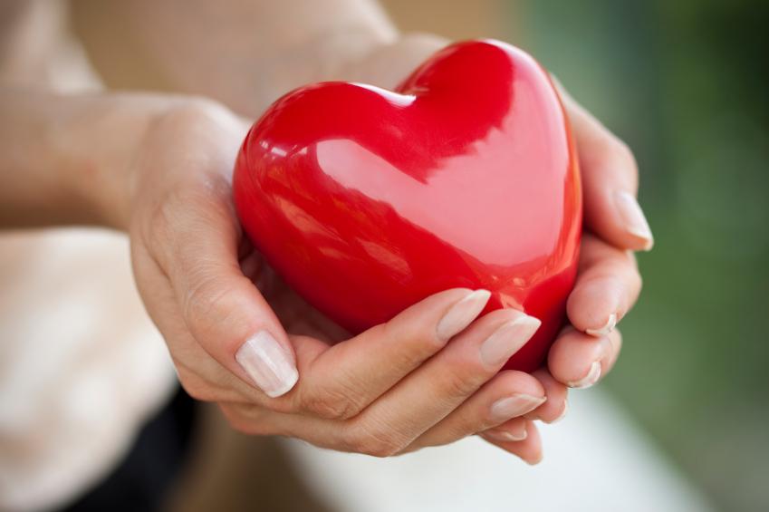 Жировая ткань помогает пережить сердечный приступ