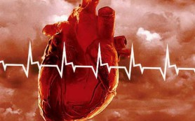 Какие физические нагрузки полезны для профилактики заболеваний сердца