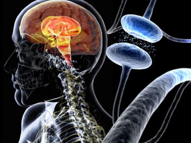 Ученые нашли способ лечения болезни Паркинсона