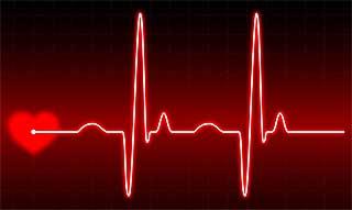 Ритм сердца дает мозгу возможность ощутить тело