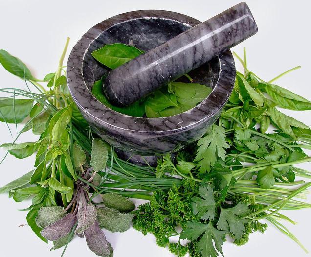 Аптечка из трав: необходимые компоненты