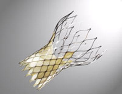 Medtronic отозвала с рынка почти 7 тыс. систем доставки протеза аортального клапана CoreValve