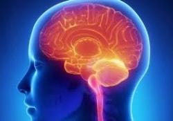 Проблемы с мышлением повышают риск инсульта и инфаркта