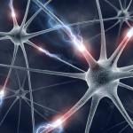 Найден ключ к лечению неврологических расстройств
