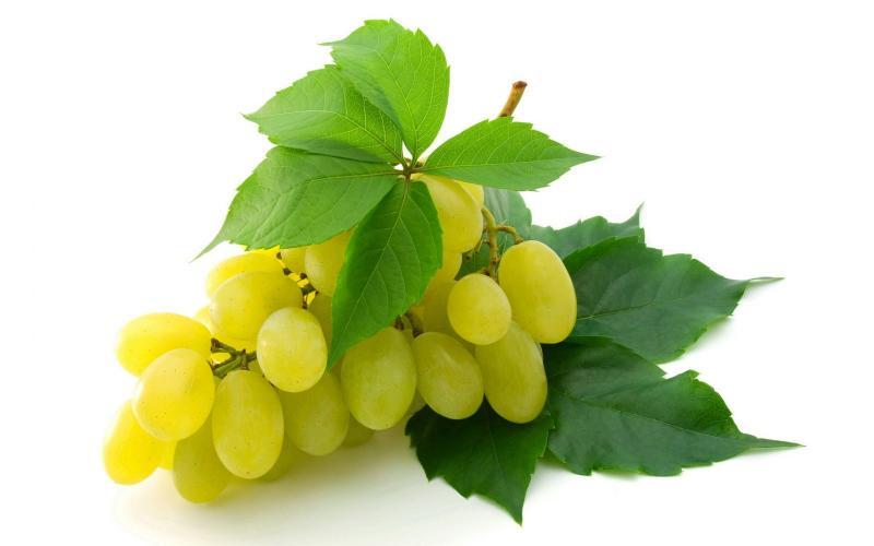 Виноград против слабоумия