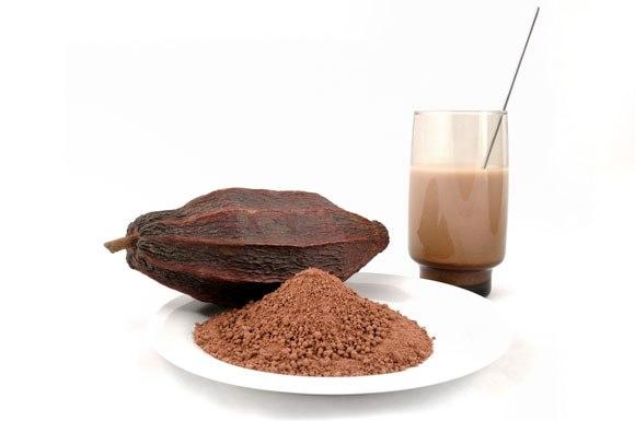 Какао предотвращает болезнь Альцгеймера