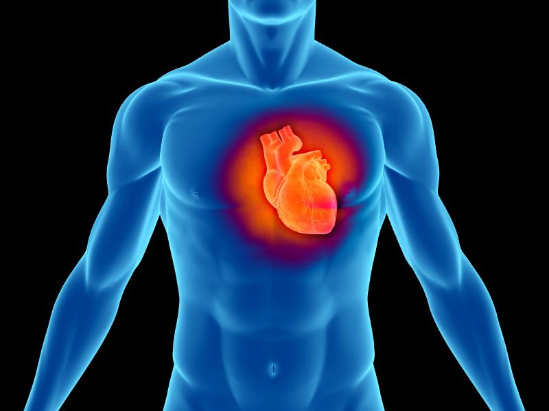 Ученые: употребление жареной пищи не связано с сердечными заболеваниями