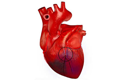 Ученые: проблемы в отношениях могут привести к инфаркту