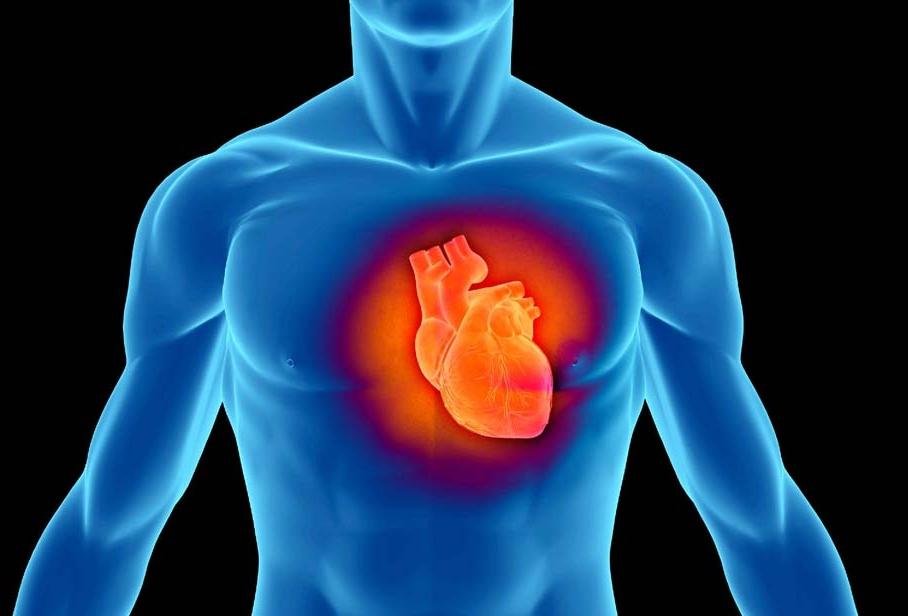 Любителям сладкого грозит сердечная недостаточность