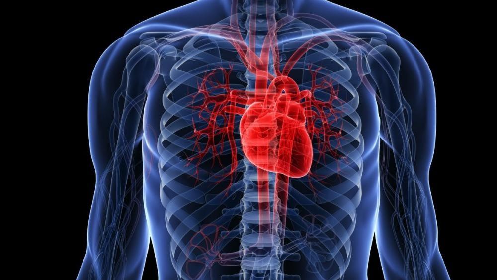 Опасные ошибки в лечении болезней сердца