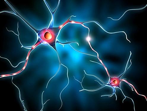 Витамины при эпилепсии