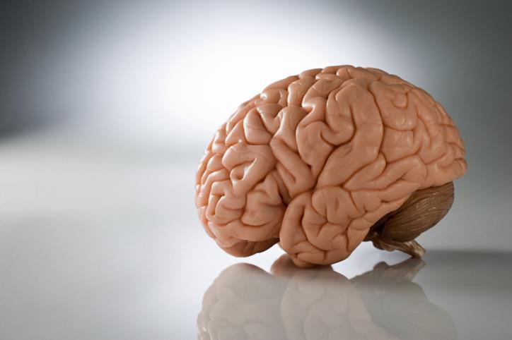К анорексии приводит неправильная работа мозга и генов