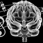 Музыка тонизирует мозг и улучшает процесс обучения