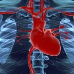Врожденный порок сердца: что делать