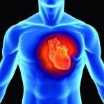 Овсянка особенно полезна после инфаркта