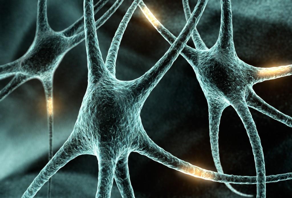 В рассеянном склерозе виноваты бактерии