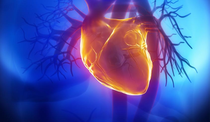Изобретен пластырь для сердца