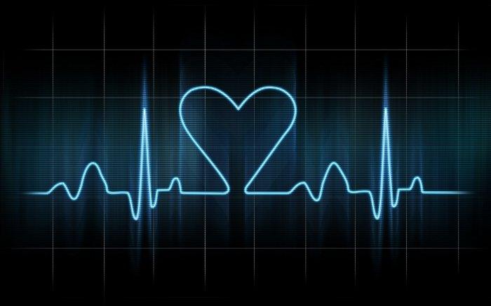 Калина, боярышник и полынь помогут при нарушениях сердечного ритма