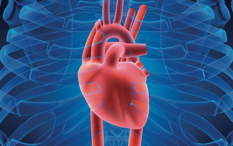 7 способов защитить сердце от болезней