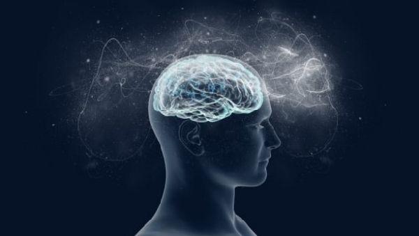 Лингвистический талант объяснили «особой активностью нейронов»