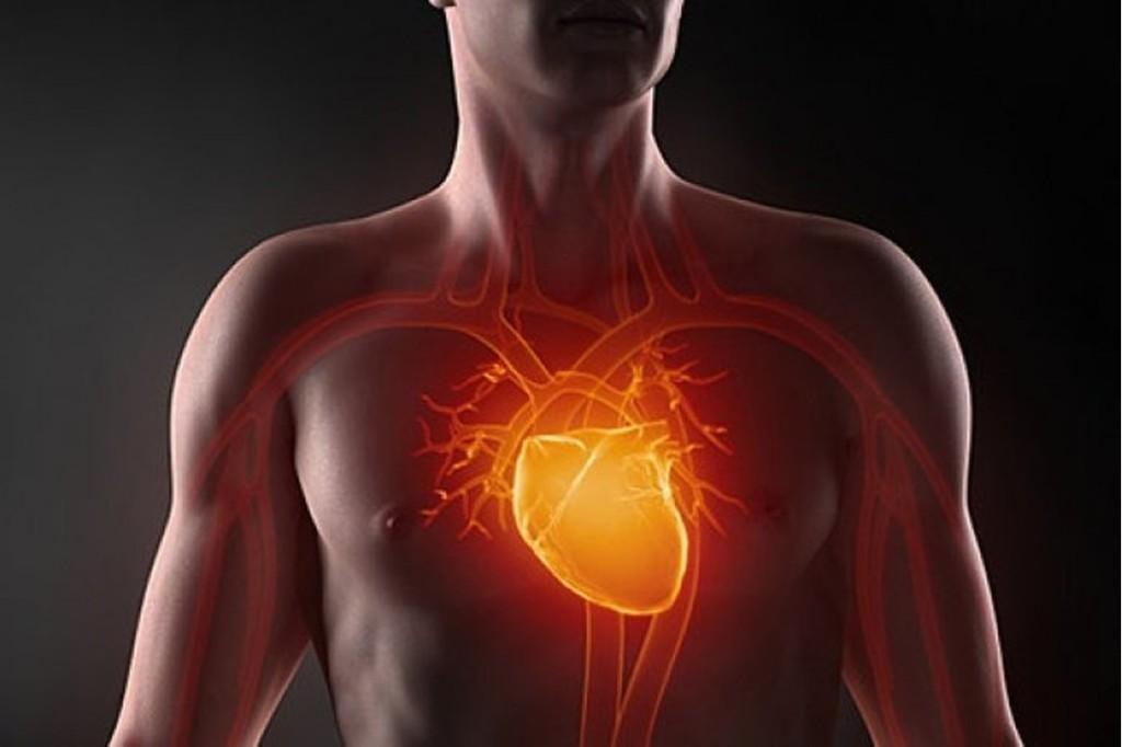 Посчитайте риск сердечного приступа