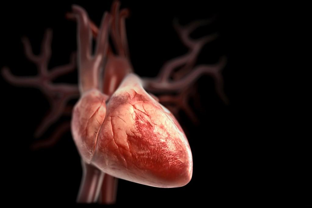 Советы, которые помогут поддерживать здоровье сердца