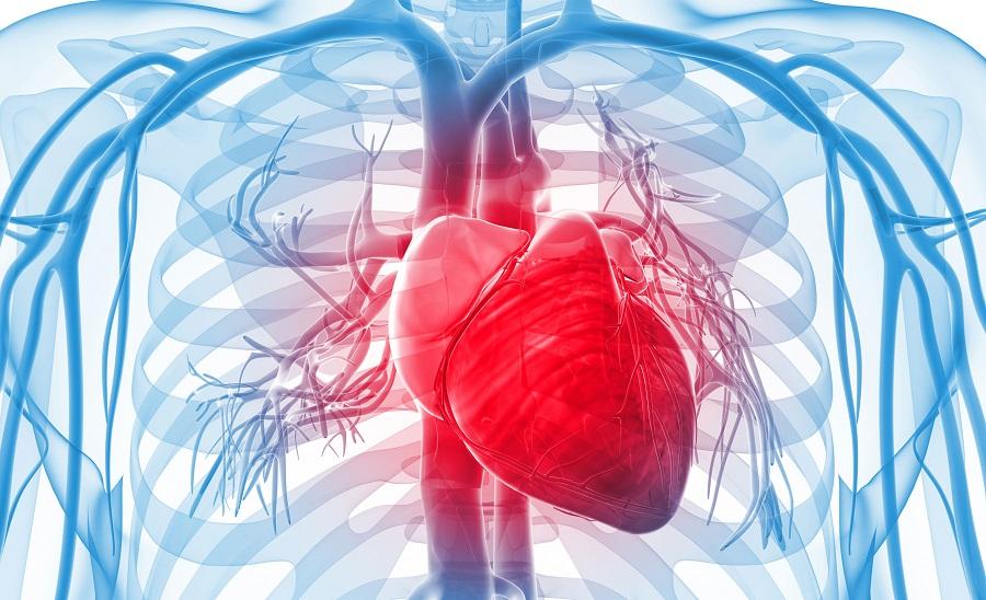 Как избежать «сердечных» проблем