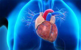 Бессимптомные инфаркты чаще случаются у мужчин, чем у женщин