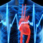 Правильное питание снижает смертность среди сердечников