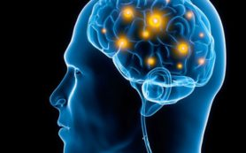 Пестициды вызывают болезнь Паркинсона