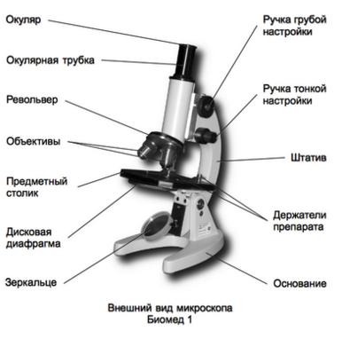 Как правильно выбрать микроскоп?