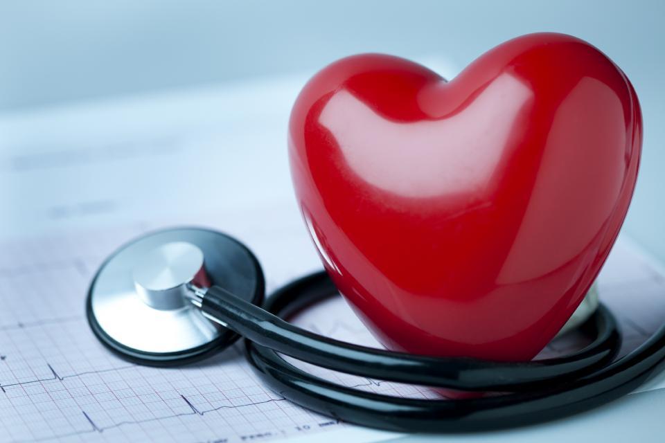 Ученые узнали, как заставить сердце регенерировать