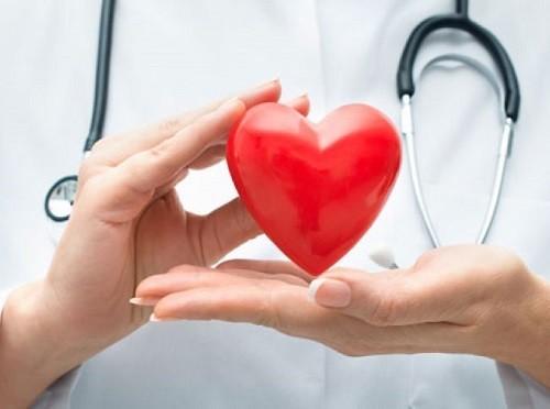 В Новосибирске разработали дешевое искусственное сердце
