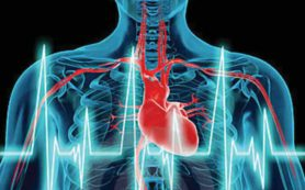 Ходьба спасает пожилых людей от инфарктов?