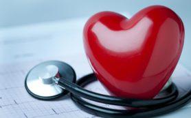 Оболочка из полиэстера поддерживает сердце