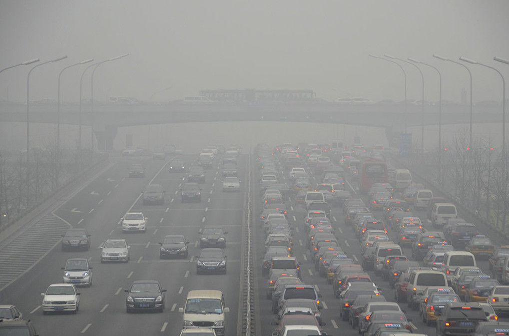 Городской воздух вредит работе мозга