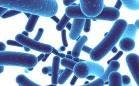 Пробиотики помогут снизить кровяное давление