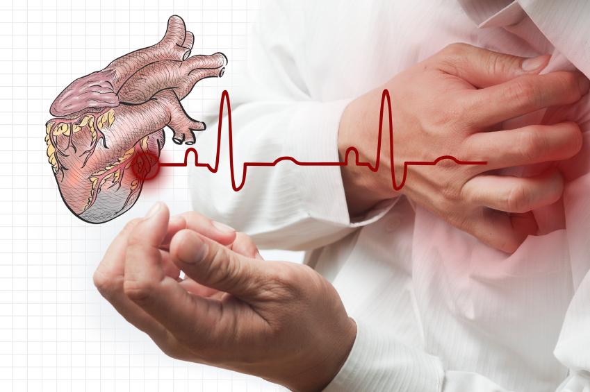 Сердечный приступ предотвращает белок