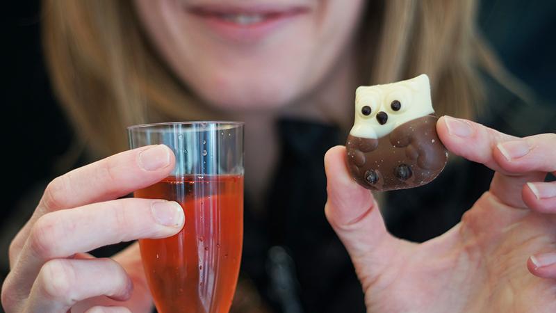 Красное вино и шоколад защищают мозг