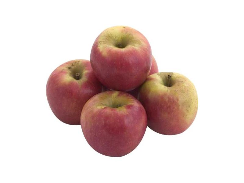 Яблоки спасают от склероза