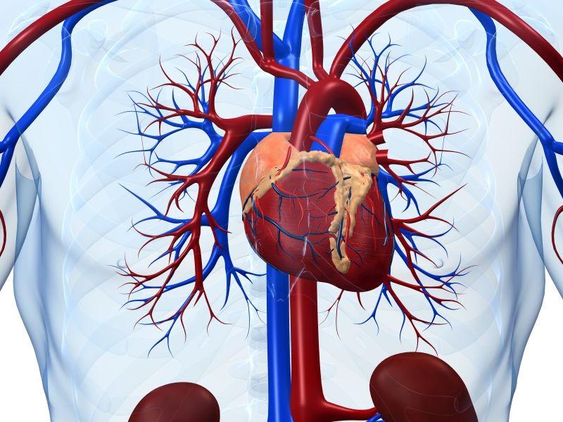 Бессонница повышает риск инфаркта