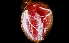 Инъекция может исцелить поврежденное сердце