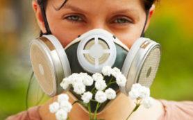 Сезонные аллергии особым образом влияют на мозг, показало исследование