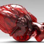 Ученые вырастили искусственное сердце из стволовых клеток